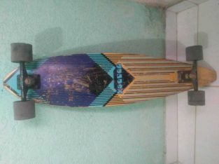 Skate long bordin